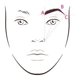 Augenbrauen Skizze
