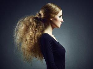 Halloween Haare