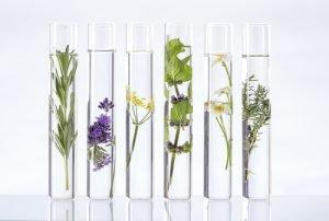 Phytohormone sind natürlichen Ursprungs