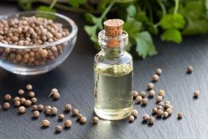 Korianderöl kann vielerlei in Beauty und Pflege eingesetzt werden.